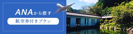 ANA 航空券付きプラン