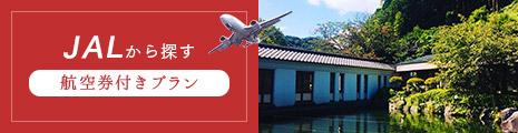 JAL 航空券付きプラン